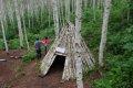 인제 원대리 자작나무 숲길 - 숲속교실