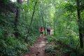 인제 원대리 자작나무 숲길 - 치유코스