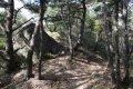 서산 아라메길 옥양봉 등산로-소나무 숲 쉼터 구간