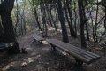 서산 아라메길 소나무 숲 쉼터-옥양봉 능선 구간