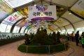 제14회 마산가고파 국화축제 전시관
