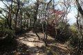 서산 아라메길 1코스 옥양봉 솔숲-쉼터구간