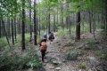 지리산둘레길 서진암 숲길