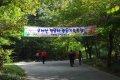 홍성 오서산 - 정암사계곡길