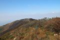 홍성 오서산 - 쉰질바위 갈림길 능선