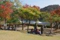 전통정원 희원 가을 나들이 - 수변공원