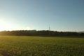 슈발바흐의 밀밭