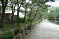 서울성곽 (와룡공원 에서 서울과학고)