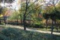 장충단 공원
