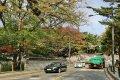 성북동의 가을