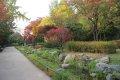 남산 야외식물원