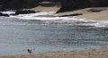 추암 해변