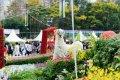 2015 홍콩 꽃 페스티벌
