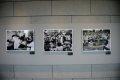 광복70주년 기념 특별전 울림 안중근을 만나다