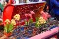 2015 고양국제 꽃 박람회