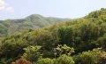 곤지암 화담숲