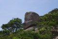용봉산 - 흔들바위