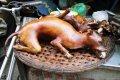 하노이의 개 요리