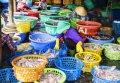 붕따우 롱하이의 수산물 시장