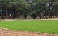 예천 금곡서원