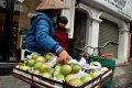하노이 거리의 과일 상인들 02
