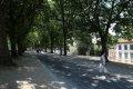 루카 성벽의 산책로