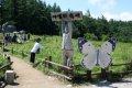2015 고한 함백산 야생화축제