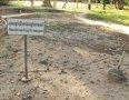투올슬랭 대학살 박물관의 공동묘지