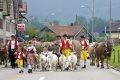 우르내쉬의 소와 목동들