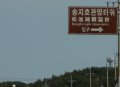 송지호 관망타워