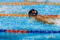 2010 싱가포르 FINA 수영 월드컵
