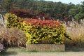 화성시 우리꽃 식물원