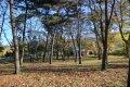 비인중학교 학교숲
