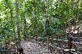 부킷 티마 자연 보호구역