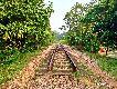 부킷 티마 철도