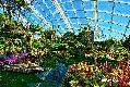 센트럴 식물원 플라워 돔