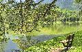 타이핑 호수 공원
