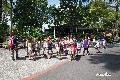 싱가포르 동물원 관광