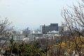 남산공원, 북측순환로의 봄(서향) 04
