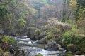 오쿠쿠지현립 자연공원