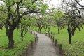 미토현립자연공원 가이쿠라엔 정원