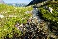 하이타트라스 산맥 흘린스카 밸리