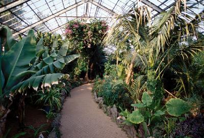 한림공원아열대식물원