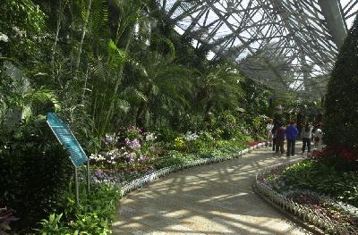 제주관광식물원