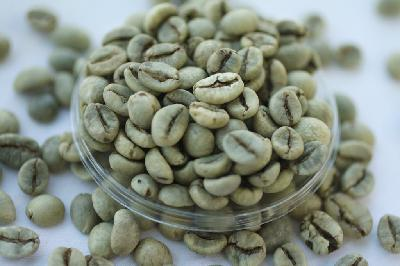 인도네시아 커피