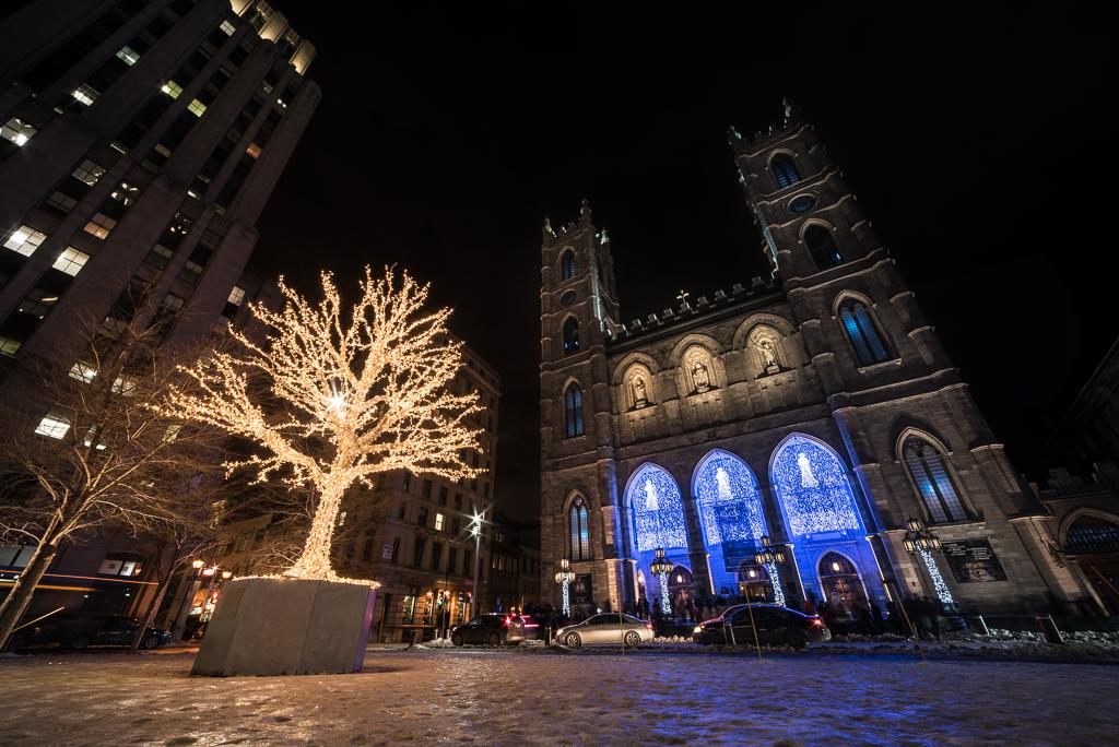 캐나다13_몬트리올의 꽃, 다름광장