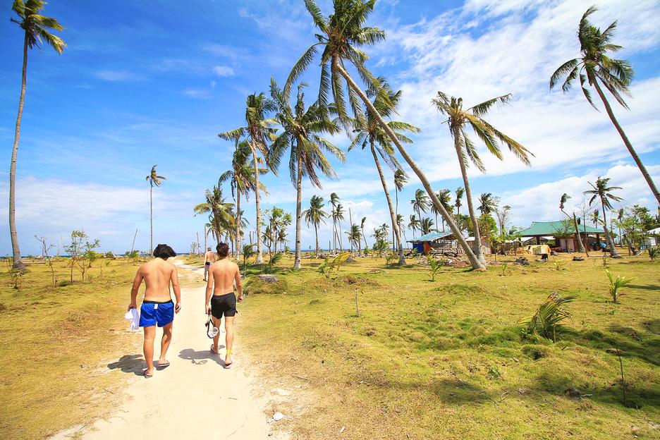 반타얀섬2.하늘 높이 솟아오른 야자수가 아름다운 마을에 도착하다.(필리핀세부)