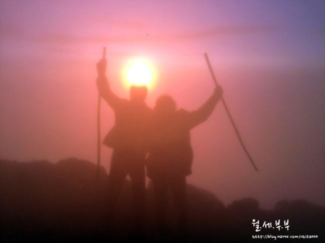 월세로 세계여행, #20-2. 과테말라 - 아카테낭고 화산 트레킹 (Acatenango, Guatemala)