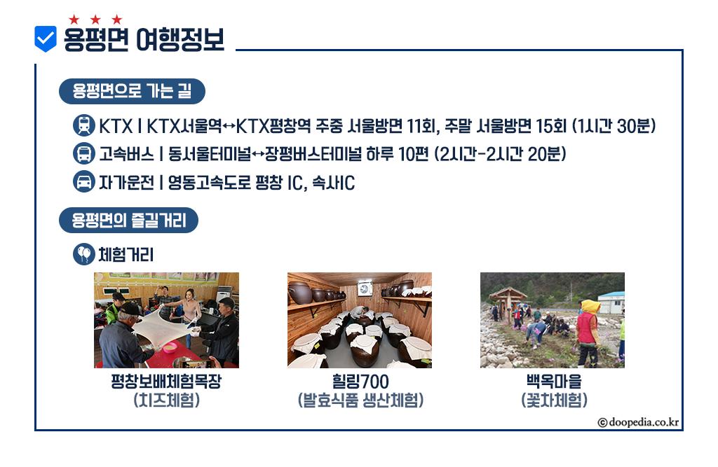 평창)상세페이지_정보안내영역_용평면(워터마크O).png