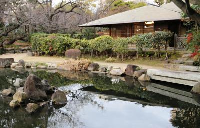 시텐노지-혼보우 정원 12
